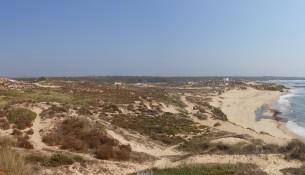 praia carreiro da fazenda